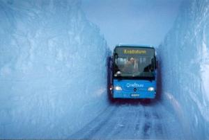 Kanskje kommer bussen