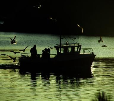 lykkelig fiskebåt