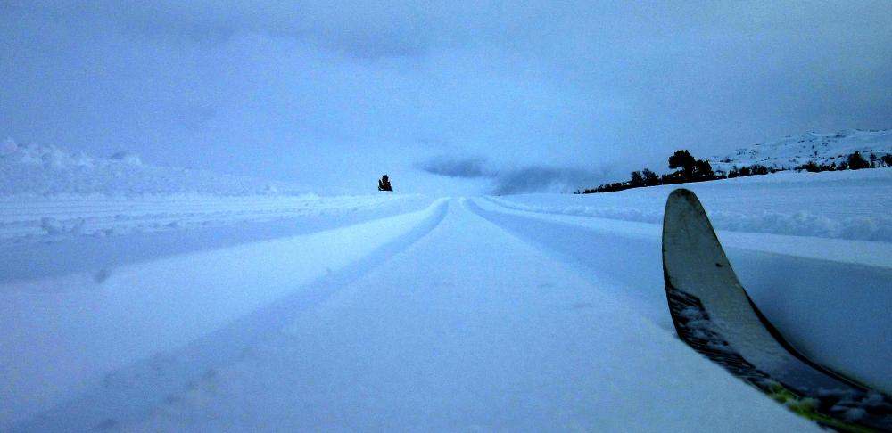 skispor_tommetanker