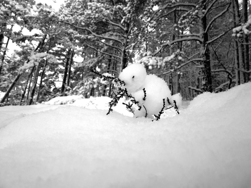 vinter5 tommetanker