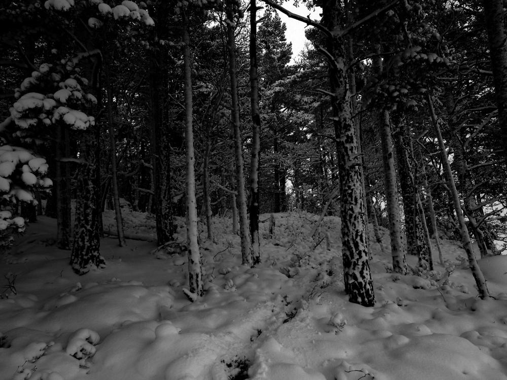 vinter6 tommetanker