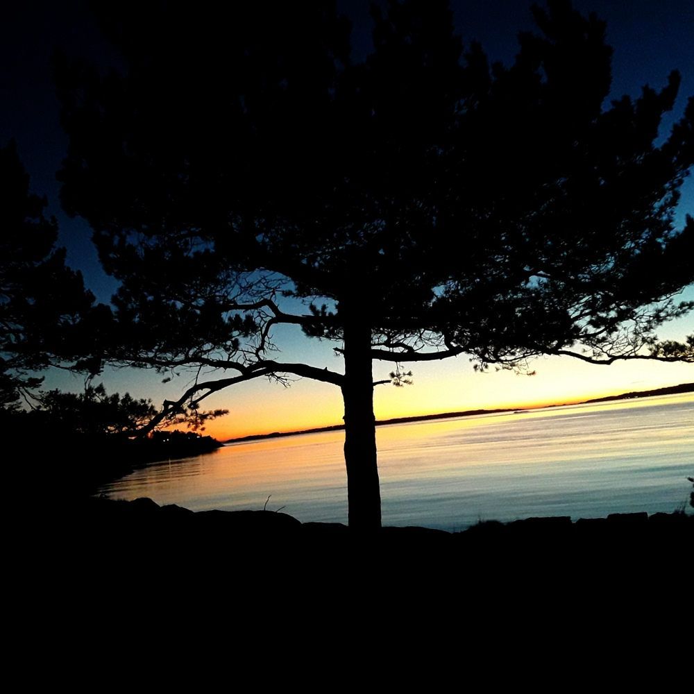 korsvikfjorden_tommetanker