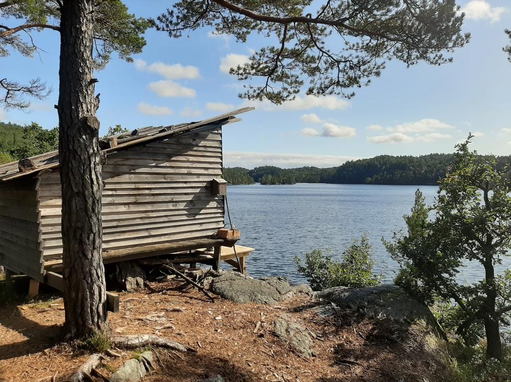 falkodden_hytte2