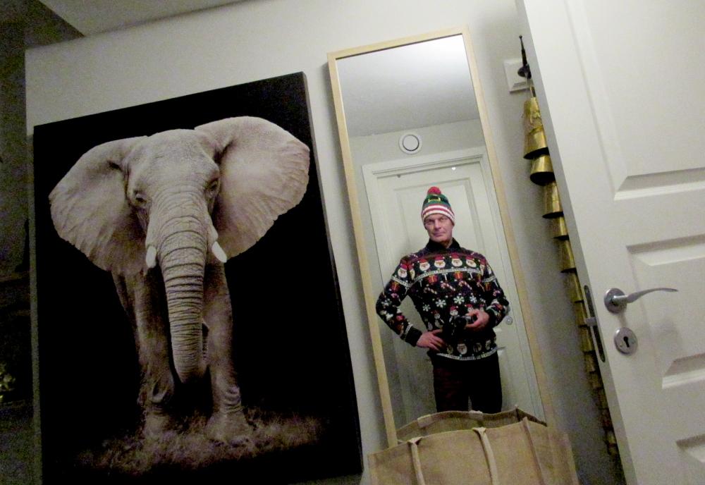 elefanten_i_rommet_tommetanker