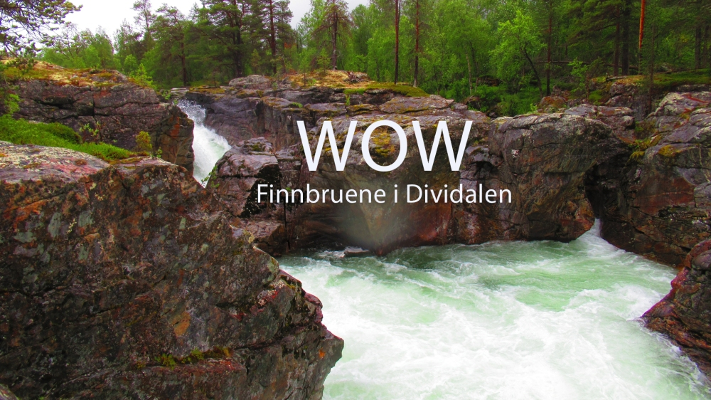 finnbruenen_wow